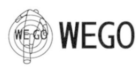 WEGO福袋の再販や再入荷に関する参考画像