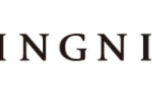 イング福袋の再販や再入荷に関する参考画像