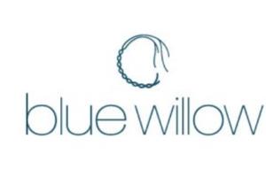 ブルーウィロー福袋の予約や中身ネタバレに関する参考画像