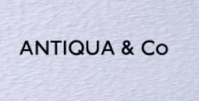 アンティカのコーディネートに関する参考画像