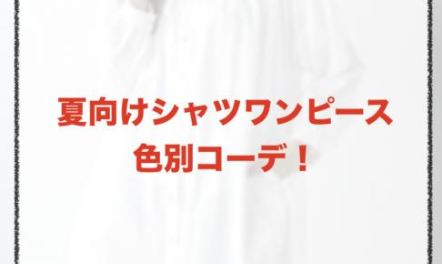 夏向けシャツワンピースのコーデに関する参考画像