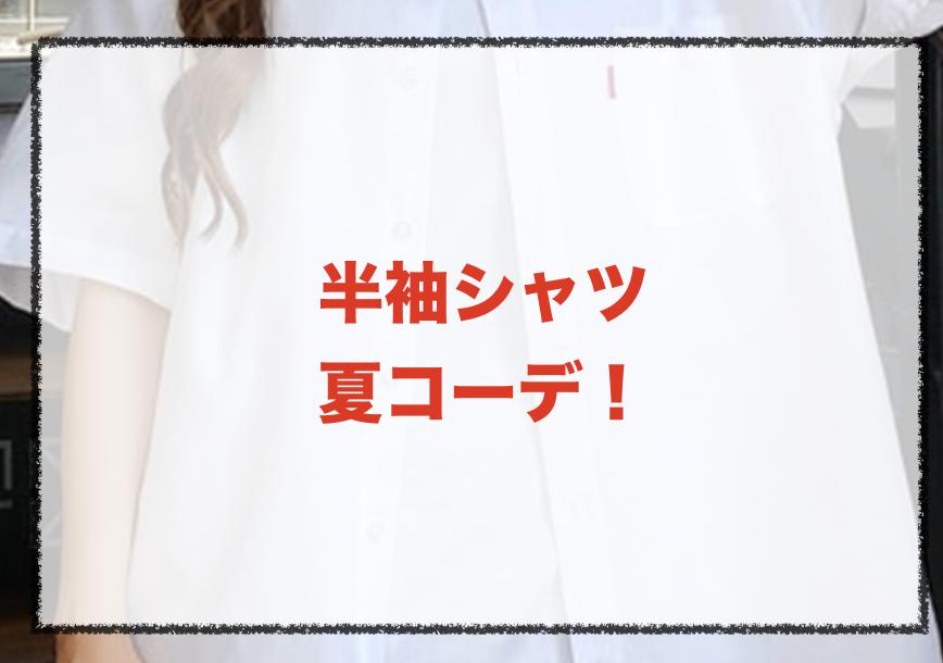 半袖シャツの夏向けコーデに関する参考画像