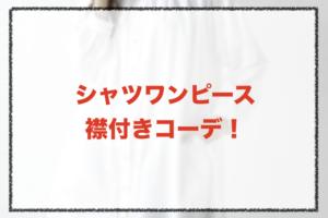 襟付きシャツワンピースコーデに関する参考画像