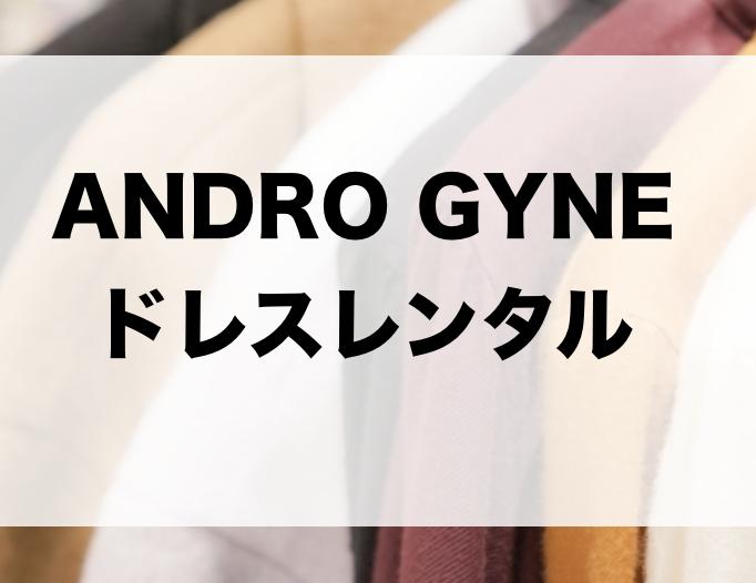 ANDRO GYNEのドレスレンタルに関する参考画像