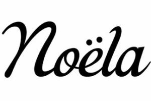 ノエラの年齢層に関する参考画像
