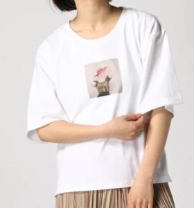 my channelの白石麻衣の衣装ブランドに関する参考画像