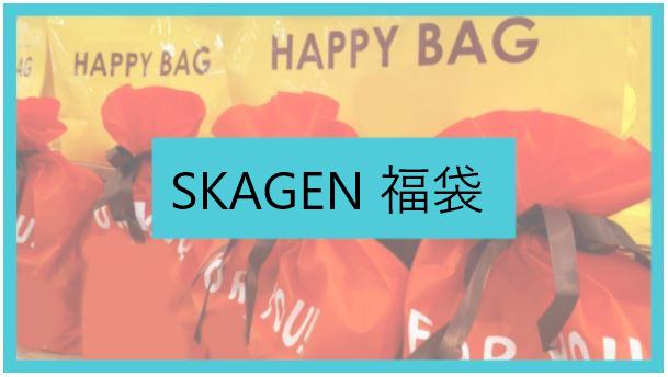 SKAGEN(スカーゲン)福袋